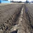 田んぼの耕耘と畦の修繕