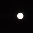 #月の光の中で