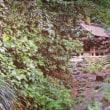 世界遺産のコントラスト:軍艦島そして沖ノ島(Patrimoni Mondiali in contrasto: Gunkanjima e Okinoshima) @イタリア語スピーチコンテスト