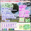 (文学・歴史)[古事記]通算331回【算太クンからの挑戦状・2018】