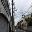 ポタリング日記-26日目-多摩川(羽村堰)
