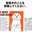 盲導犬育成チャリティー!カレンダー他(おうちCafeわんこ堂)