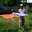 再び増加するロヒンギャ難民 スー・チー国家顧問自身のロヒンギャに対するネガティブな意識