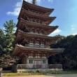 京都金閣寺・醍醐寺・毘沙門堂の紅葉