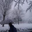 新春の一齣・雪景色