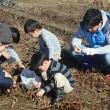 今年最後の「田んぼと畑の耕育教室」