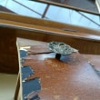 ライティングデスクのリペア作業工程