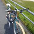 マウンテンバイクの変速ができない!