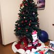 クリスマス飾りはいつからOK?
