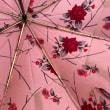 母に頂いた傘