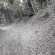 八王子の史跡 「絹の道」を散歩