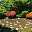 青もみじを求めて京都へ