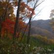 紅葉真っ盛りの小屋生活
