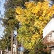 あおぞら文庫へ是非どうぞ!~丹沢登山の皆さんへ     北丹沢の麓の小さな店
