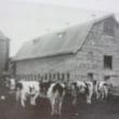 旧町村農場 秋の感謝祭!開催のご案内!