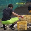 強打者へ再び!2017年秋、バットを振り込む城所龍麿!!