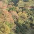 ようやく行きました、房総の奥座敷『いろりの宿 七里川温泉』