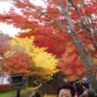 山梨観光案内16~秋の河口湖~