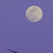 GW 月とヒコーキ