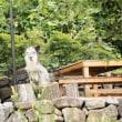 唐松岳登山   +++ 2017年8月26日~29日 +++