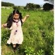 mainasa garden ブドウ棚現る!!