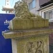 神社仏閣巡り73 中津瀬神社in如月