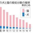 野良猫の不妊手術のボランティア活動中止(富山)