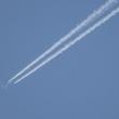 まつたけ山復活させ隊 NEWSLETTER 1305 珍しく日中を通して雲量0の快晴でした.アカマツ葉も緑増す!