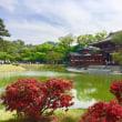 春爛漫の京都 〜 平等院(その1)