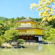 5月の金閣寺