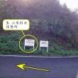 創楽 富山の山 牛嶽登山 二本杉休憩所より! アクセス動画作成しました!
