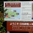 1月3日 宮崎観光3日目・・・クルスの海