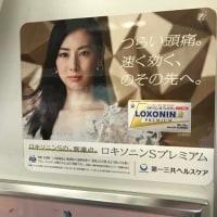 5月4日(金)のつぶやき:北川景子
