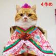 おひな様の歴史(猫のふく村さん編)