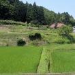 茨城県北2017年の夏・・小さな棚田