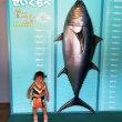 ぐるっとパスで遊ぼう!その10 葛西臨海水族館