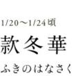 今日から大寒(^ー^)