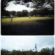 焼津市 清見田公園🐟