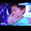 6/24 報特の特集 アレルギー対策 保湿剤