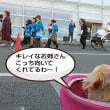 姫路城と宝恵駕籠行列
