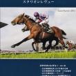 【スタリオンレヴュー2018(Stallion Review)】が発行!
