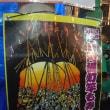 関東の奇祭「提灯竿もみまつり」