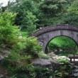 「小石川後楽園」と「白山神社」(2)