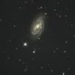 ASI071MC-Pro + RC20cmによる銀河・星雲