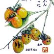 12月絵手紙「山柿」を届けます