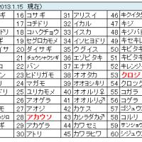 鳥撮りデータ47(2013.1-3)
