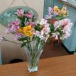 5月2回目の花