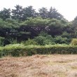 保養ネット・よこはまの 2017福島の子どもキャンプ(伊豆河津町いりあい村)