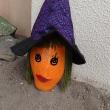 新しいハロウィーンかぼちゃ仲間💖