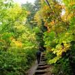 (4)尾瀬 モウカケの滝と桧枝岐村